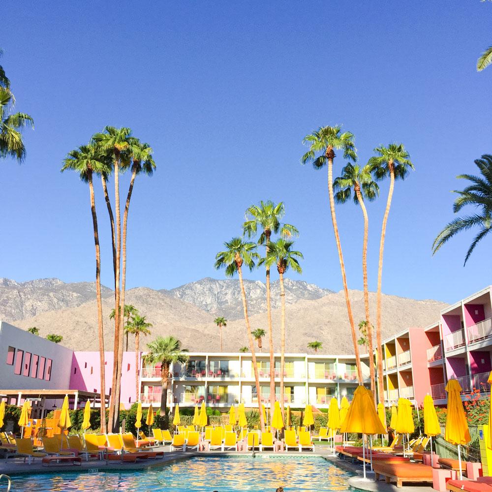 saguarohotel_palmspring_shakermaker