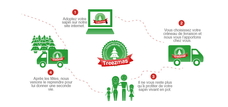treezmas_sapin_en_pot